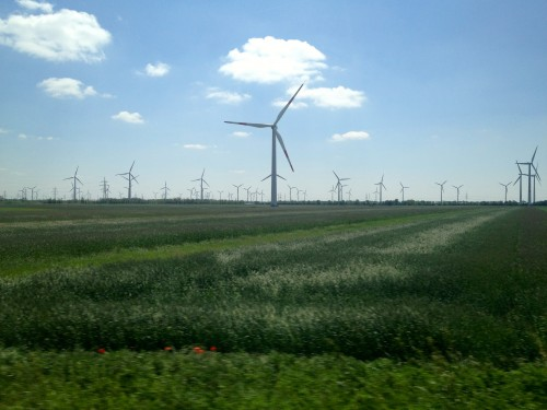 Windmills stretching across the flat green Hungarian Plains with a bright blue sky behind